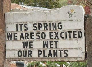 It's Spring, we wet our plants