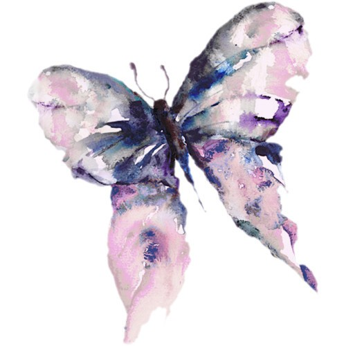 Water color Butterfly