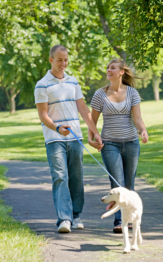 Boy & Girl walking yellow lab