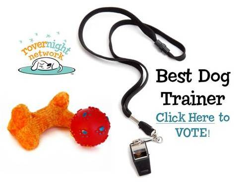 Vote for Best Trainer